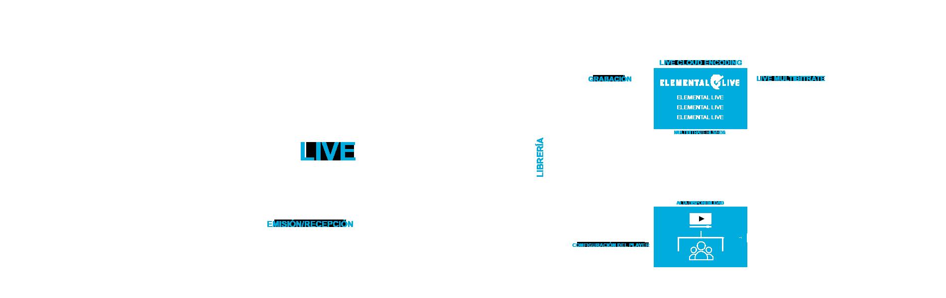 mest-livestreaming